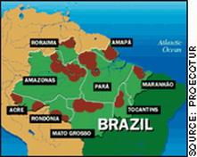 <hr><h2><u>LA AMAZONIA EN PELIGRO</h2></u>
